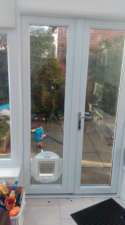 Dog Flap Installers Newcastle Dog Flap Fitters North East Cat